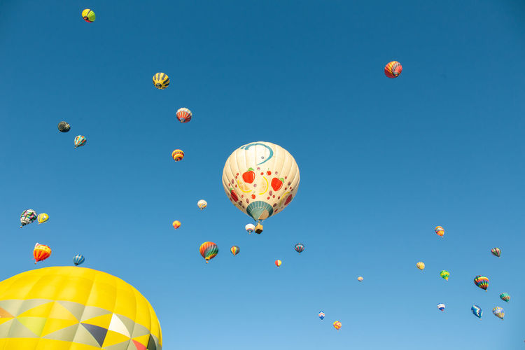 Low angle view of hot air balloons against blue sky