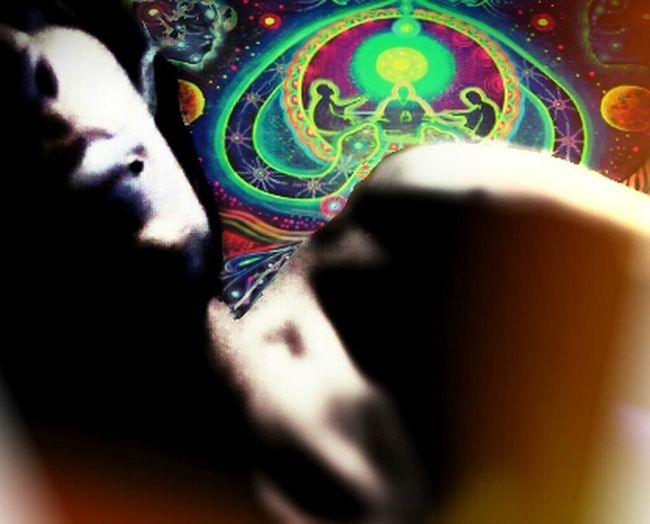 Psycadelic DMT Pondering The Meaning Of Life Finding Myself DMT. I've searched for a reason why or how we are here. if u are as well... then I suggest 3 long hits of dmt and a comfortable area to lay down