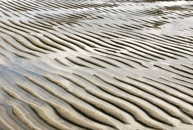 Sand dunes on the beach filled with water PPPerspectives On NaturebbBeauty In NaturessSandnnNew Zealand