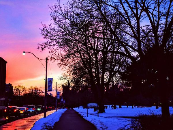 Tree Sunset Snow Dusk Winter Street Light Cold Temperature Street Illuminated Transportation Sky Outdoors No People Car Nature Road Cityscape Park City Tree Beauty In Nature Sunset_collection