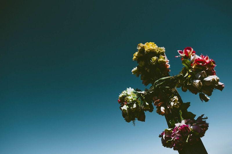 Blue Sky Cross
