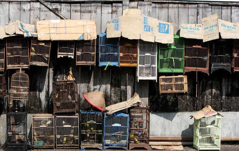 Bird Market Birdcage Birdcages Pasar Asem Pasar Burung Yogyakarta