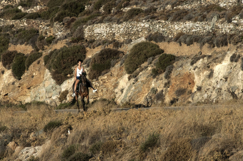 Man riding horse on mountain