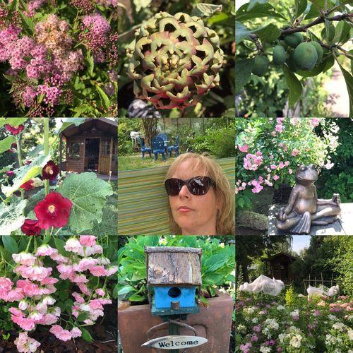Paradiso😍 Garden Gardening Garden Flowers
