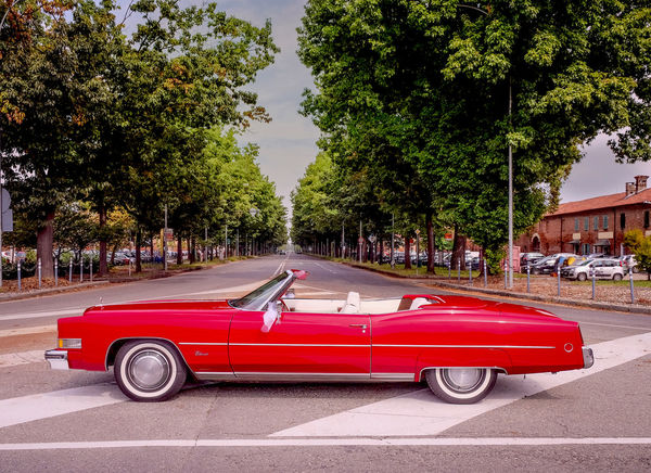 American Cars Cadillac Eldorado Cars Vintage Convertible Car Frontal Glass Land Vehicle Luxury Cars Mode Of Transport Red Car Road Transportation
