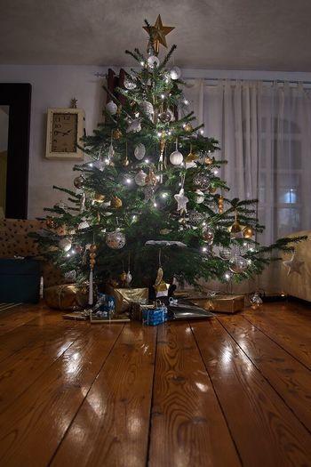 Christmas Tree Celebration Christmas Tree Christmas Tree Tradition Indoors  Living Room No People Christmas Lights Holiday - Event Christmas Ornament Christmas Stocking Home Interior EyeEmNewHere