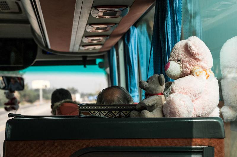 Teddy bears in bus