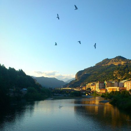 Reflection Mountain Mountain Range Flying Bird Lake Water Landscape No People Outdoors Nature Sky Sunset Beauty In Nature Scenics Day Large Group Of Animals City Building Exterior Tree Ventimiglia LiguriaMonAmour Liguria Italy Liguria - Riviera Di Ponente Natur_collection