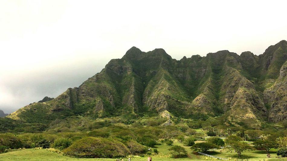Kualoa Ranch in Hawaii. Tropical Mountain Nature