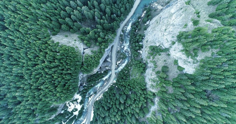 Aerial Photography Picea Abies River Aerial View Aerial Shot Summer Exploratorium Water Backgrounds Full Frame High Angle View Close-up Grass Green Color LINE