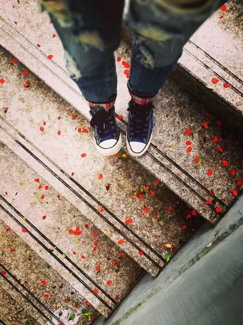 Adult Close-up Flower Flowers High Angle View Human Body Part Human Leg Lovely Low Section Memories One Person Outdoors People Petal Petals Petals🌸 Real People Shoe Shoe Shoes Stairs Standing Steps Steps And Staircases Summer The Street Photographer - 2017 EyeEm Awards