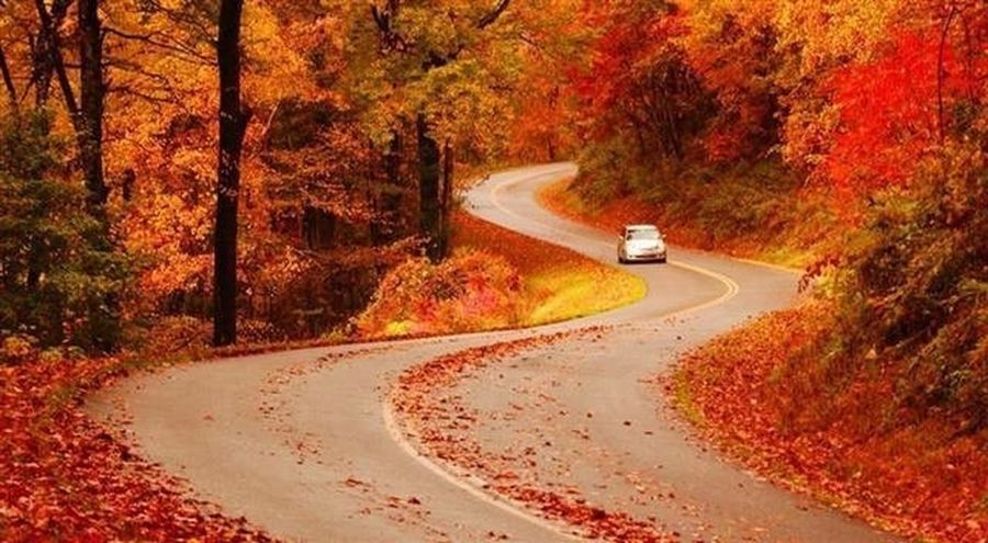 Red Road ❤️❤️❤️ Real Picture Secret Places 😜 Hello World ❤ You Follow My Eye Em 💙 I Follow Back No Edit First Eyeem Photo