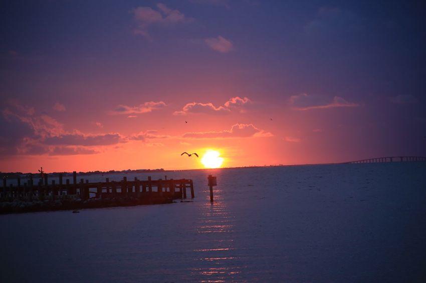 Mobile Bay Alabama Fort Morgan Ocean Clouds Sunset Sky Sunset Water Sea Beauty In Nature Scenics - Nature Orange Color Tranquility Tranquil Scene Beach Land Bird Sun Nature Cloud - Sky Silhouette Horizon Horizon Over Water Idyllic Outdoors