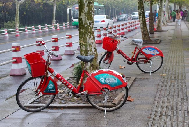 Bike share Bike Share Red Bikes Bicycles Street Blockers Street Road What's On The Roll Hangzhou China Colour Of Life Two Is Better Than One Eyeemphoto