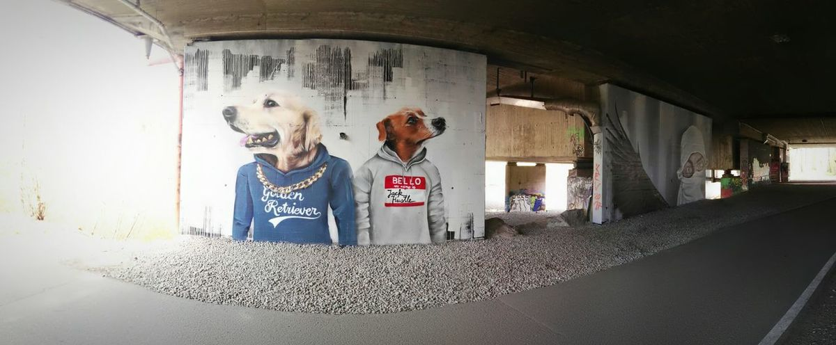 Good Stitched underTbridge Bad Light Bregenz Freewall Autobahn A14 Graffiti Graffiti Wall by ALBINO_ONE Art