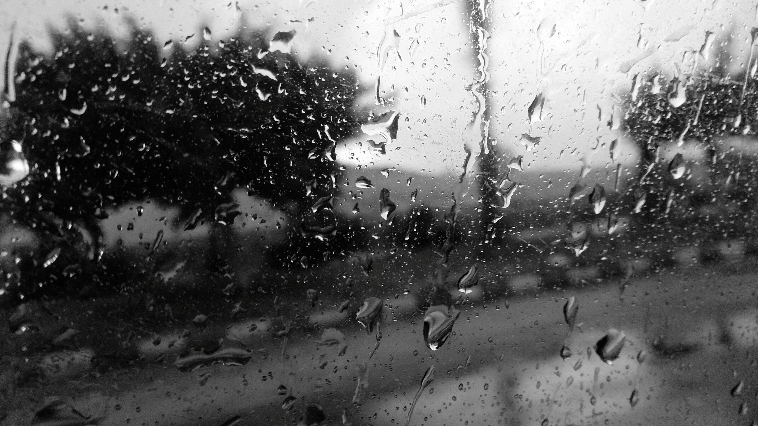 window, wet, season, water, drop, indoors, rain, weather, day, sky, no people