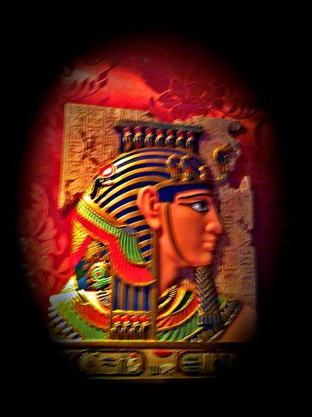 Museus Brasil Egito Arte Brazilo Brazil