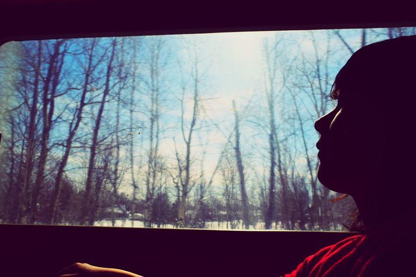 To the nature Via Train Silhouette Adventure Buddies Open EditWHiTE WORLD Montreal to Quebec city