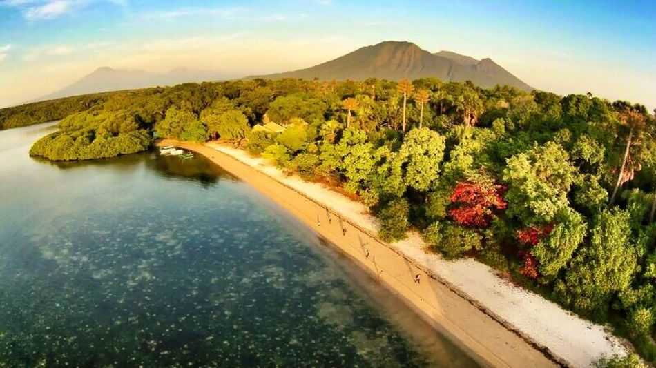 Bama, Baluran National Park Check This Out Pesonaindonesia Wonderful Indonesia Hello World INDONESIA Banyuwangi Travel Photography EyeEm Masterclass Photojournalist Life Is Beach Nature Photography EyeEm Nature Lover Beach Photography