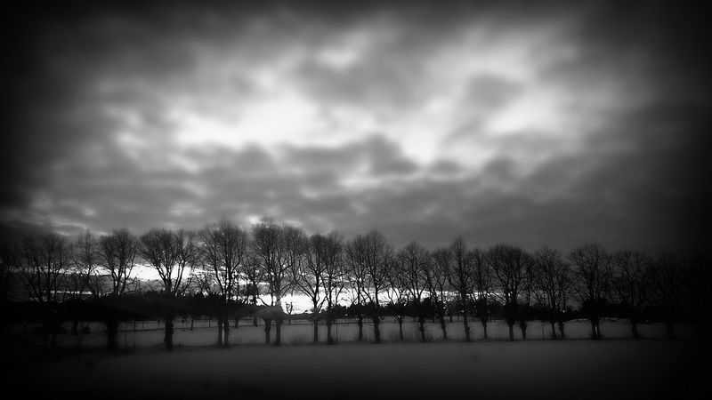 Drottningholm Black And White Monochrome Mobilephotography On The Road Winter Cellphone Photography Snow Ekerö Nature