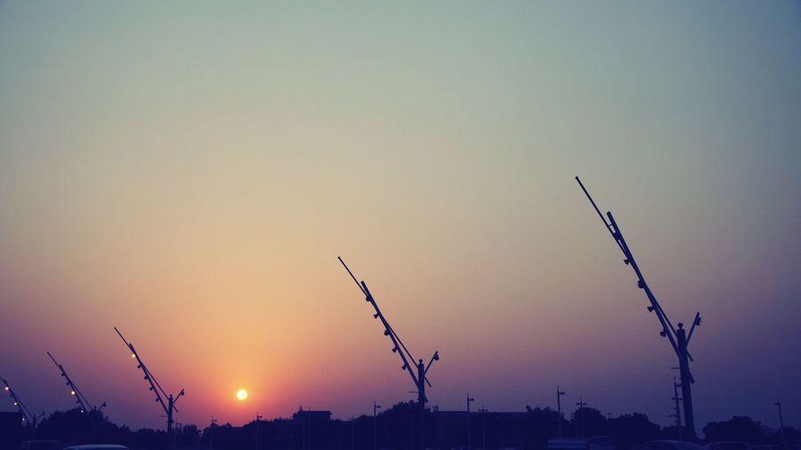 Silhouette birds against sky at dusk
