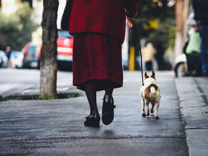 Low Section Of Woman With Dog Walking On Road