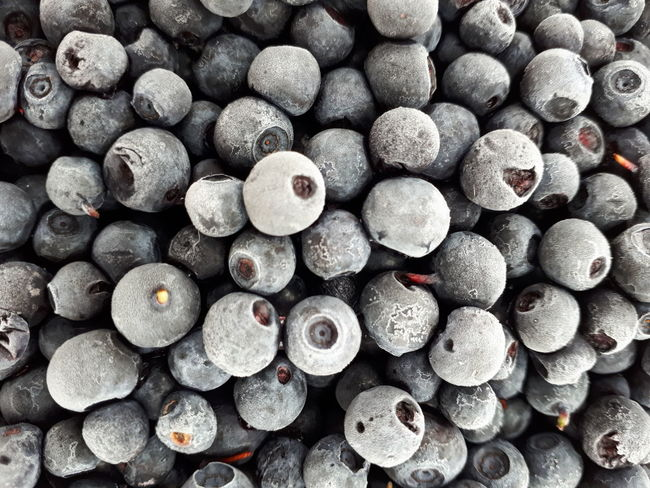 Blueberry Large Group Of Objects Full Frame Abundance Backgrounds No People Stack Heap Textured  Day Close-up Indoors  The Week On EyeEm Investing In Quality Of Life EyeEmNewHere Breathing Space Food Stories Shades Of Winter