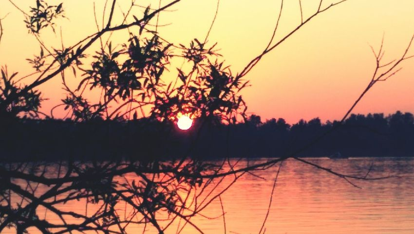 Sunset Sunset EyeEmNewHere Eye Em Reflection Landscape Nature Silhouette Water Outdoors Sky Beauty In Nature Horizon Over Water River Orange Color Scenics Tree Clear Sky Sun Plant No People