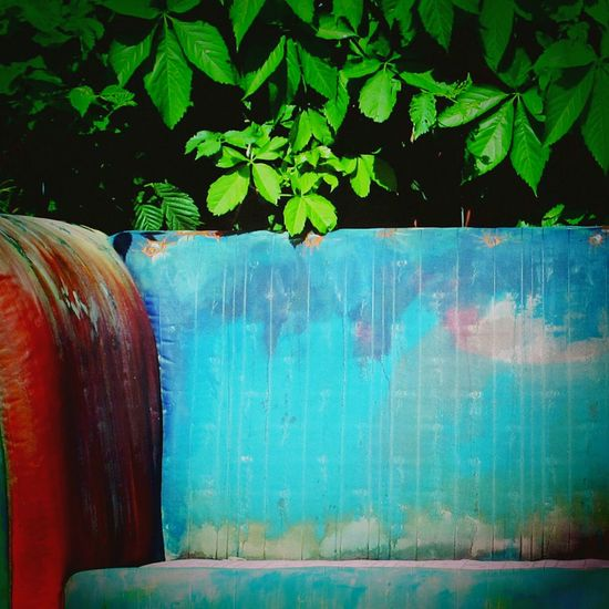 """Curbside couch, """"won't anyone take me away"""". Curbside couch """",I'm,starting to decay"""". Couchsurfing Multi Colored Outdoors Growth Green Color No People Blue Branch Green Day Plant Tree Leaf EyeEm Gallery Eye For Photography Man Made Object Tranquil Scene Photo Close-up Abandoned"""
