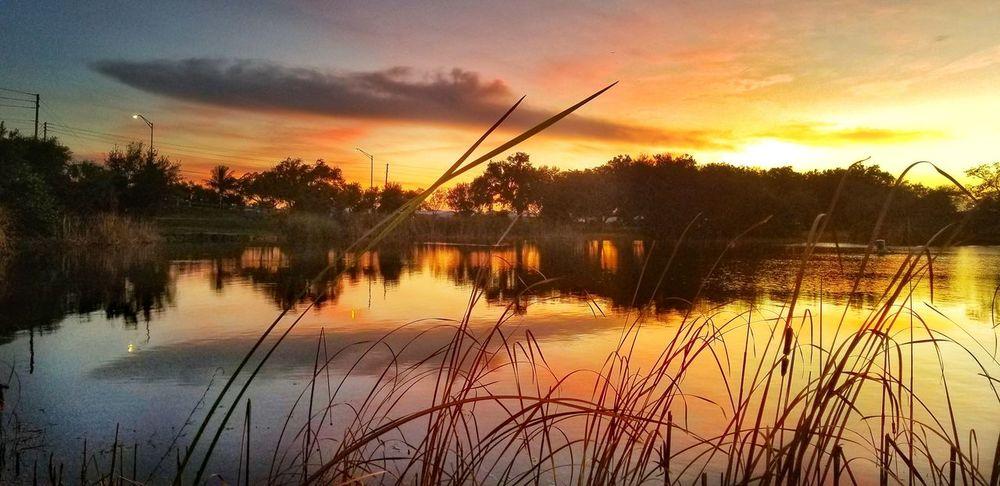 Water Sunset Lake Nautical Vessel Silhouette Reflection Sky
