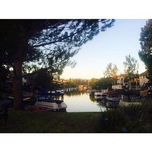 O.o Walk FatAmerica WLV California