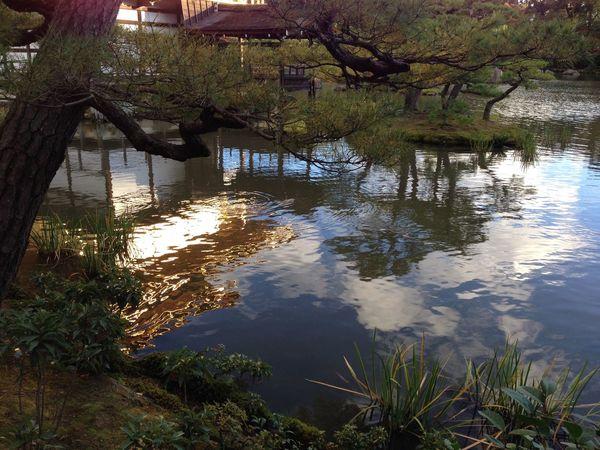 金閣寺 Kinkakuji Temple Kinkakuji Temple Of Japan 鹿苑寺(金閣寺)Kinkaku-ji Temple