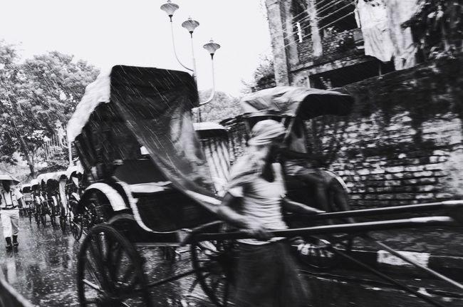 The Rickshaw of Kolkata.mMode Of TransportoOutdoorsmMendDaylLand VehiclerReal PeopleTTreebBuilding ExterioroOne PersonpPeoplerRickshawBBengalpPulleyCCyclePPoor sStreetsStreetphotographyKKolkataCCalcuttabBlackandwhitepPhotographyRRaindDurgapujaLLive For The StoryTThe Street Photographer - 2017 EyeEm Awards The Street Photographer - 2017 EyeEm Awards The Photojournalist - 2017 EyeEm Awards Let's Go. Together. Sommergefühle Mix Yourself A Good Time The Week On EyeEm