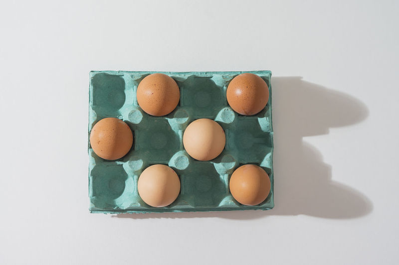 High angle view of eggs on white background