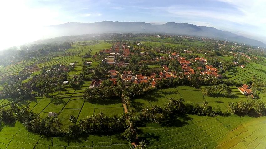 From the eagle's eyes #drones Tree Landscape Grass Green Color Scenics Beauty In Nature Nature Sky Day Outdoors