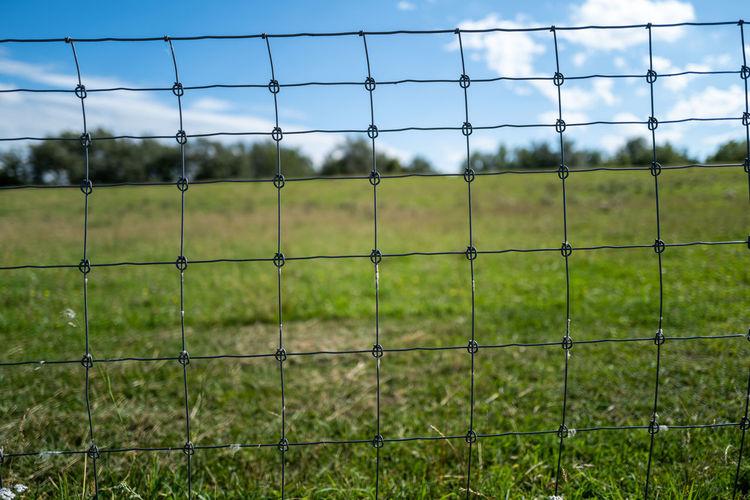 Field seen through fence