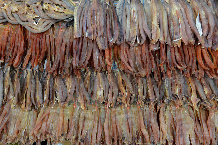 Full frame shot of seafood for sale at market stall