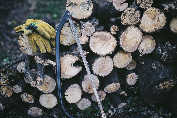 Tilt Shot Of Saw And Protective Gloves On Log Stack