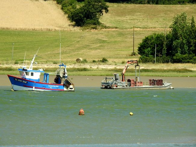 River France Nikonphotography Taking Photos My Point Of View Getting Inspired Sideview Hanging Out Fishing Boat Close-up Getting Creative Boats And Water Boats Tréhiguier Travel Photography Estuary View Landscape_photography Check This Out
