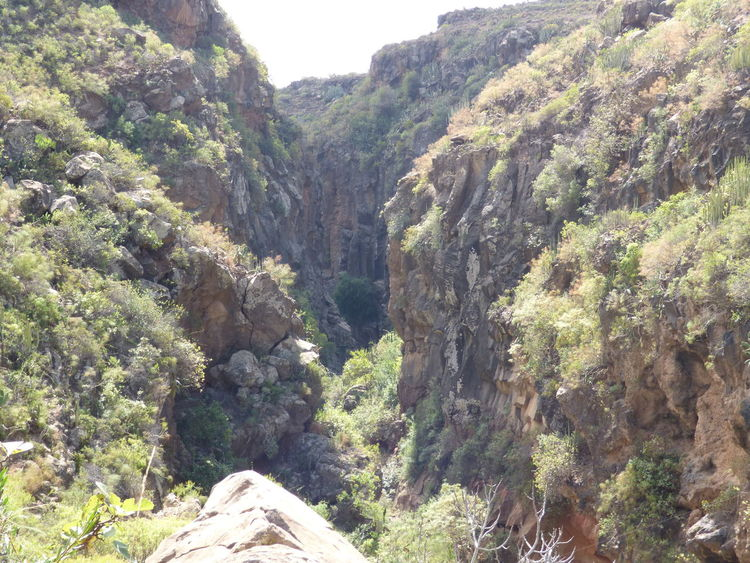 Barranco Canyon Cliff Day Eroded Exploring Geology Nature Physical Geography Rock Rock Formation Rocky Mountains Tenerife Vacation Walking