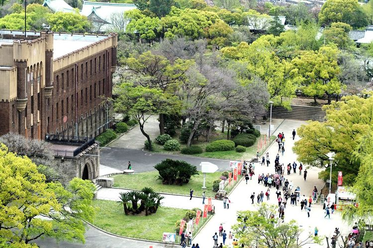 High angle view of people walking in park