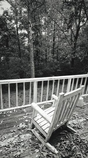Black And White Friday Tree Day No People Outdoors Nature Alabama Alabama Outdoors Centerpoint Blackandwhite Black & White Blackandwhite Photography EyeEmNewHere USA USA Photos Thinking Silence Moment Life
