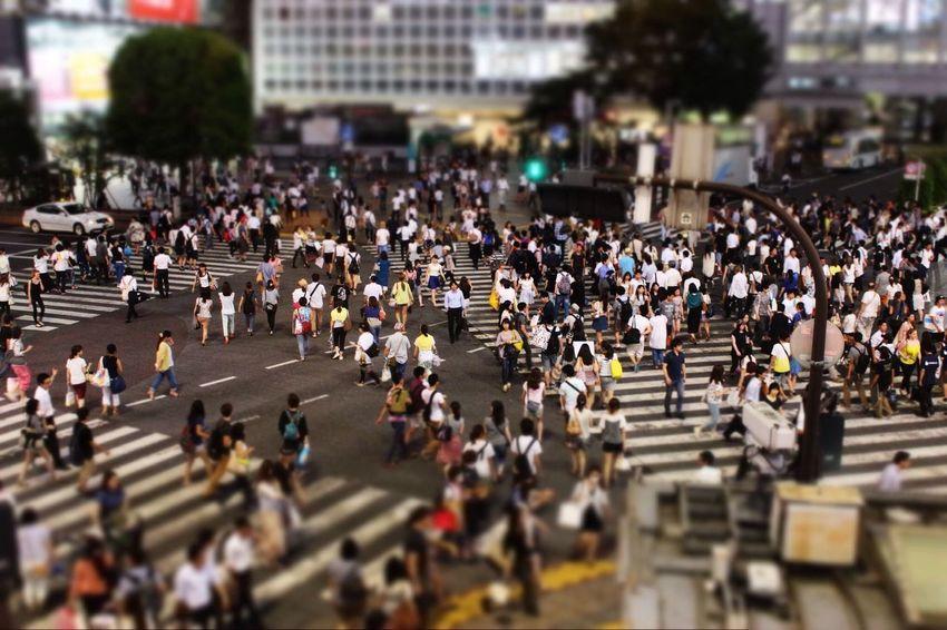 Crossing the street in Tokyo Tokyo Travel Japan People