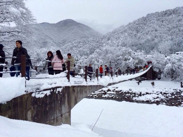 People Walking  Suspension Bridge Snow ❄ Cool Weather