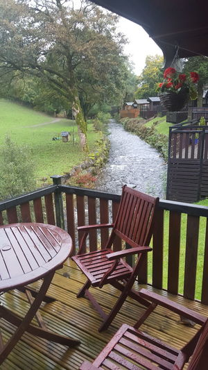 Wet Weather Fresh Air & Nature Tree Chair Table Seat Water Grass Outdoor Chair EyeEmNewHere