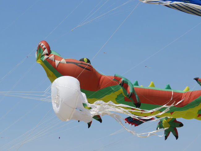 Flight Bros Kitesurfing Chilling,,relaxing, Fun Summet,event ,hat,,friends Fesrival,fun,saturaday EyeEm Selects Flying Working Sky Close-up Aerobatics Fishing Equipment Vapor Trail