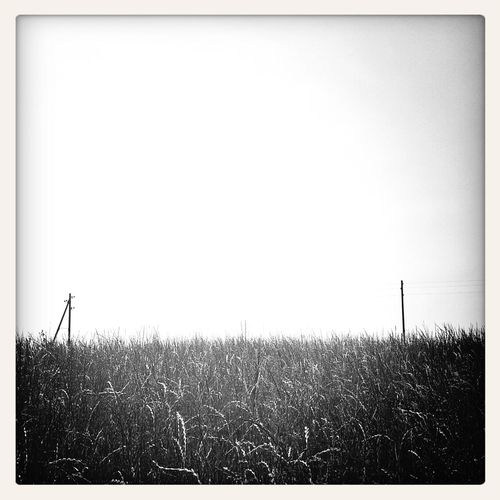 Summer - Blackandwhite Mobile Photography Landscape Sky