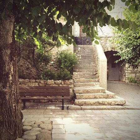 Streetphotography Steps History Ancient Tree Architecture Built Structure No People Outdoors Day Architecture IPhoneography Building Exterior Bench