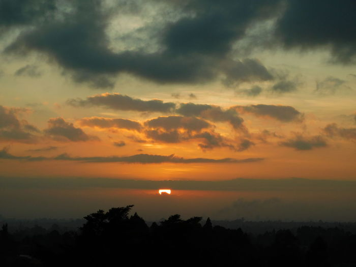Sunrise_Collection Sunrise Sunrise Clouds Amd Trees. Sunrise2017 Dramatic Sky Cloud - Sky Scenics Sky Nature Tree Beauty In Nature Tranquility Landscape Sun Outdoors Tranquil Scene Silhouette No People Beauty Moon Astronomy Day EyeEm Sunrise Silhouette