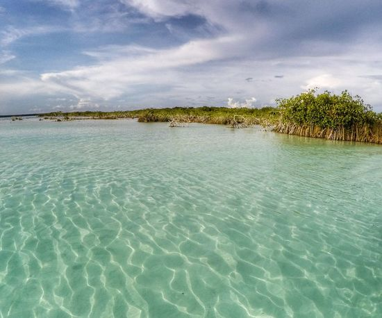 Breathtaking landscape. 🚣 || Tranquility Cloud - Sky Vacations Beauty In Nature Nature Landscape Scenics Outdoors Travel Destinations Nature No People Bacalar Bacalar Lagoon Textures Gopro Goprohero4 Landscape_Collection Beauty In Nature Beautiful Mexico Lagoon Lagoon Water Turquoise Turquoise Water Mothernature